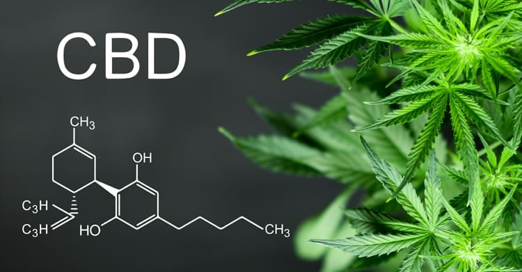 CBD structure vs THC structure. The differences between them.