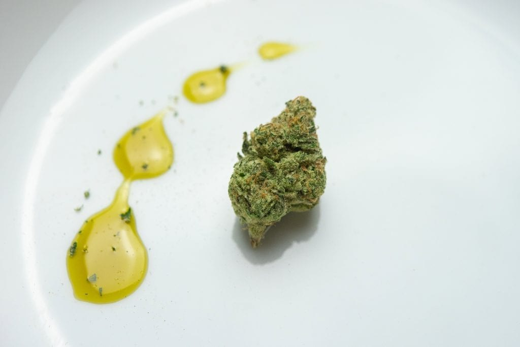 a cannabis nug sits on a white plate with weed cooking oil beside it.
