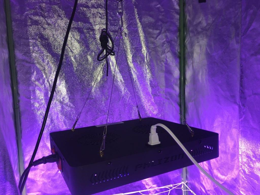 Best led grow light, best indoor grow light, 1200w led grow light in grow tent.