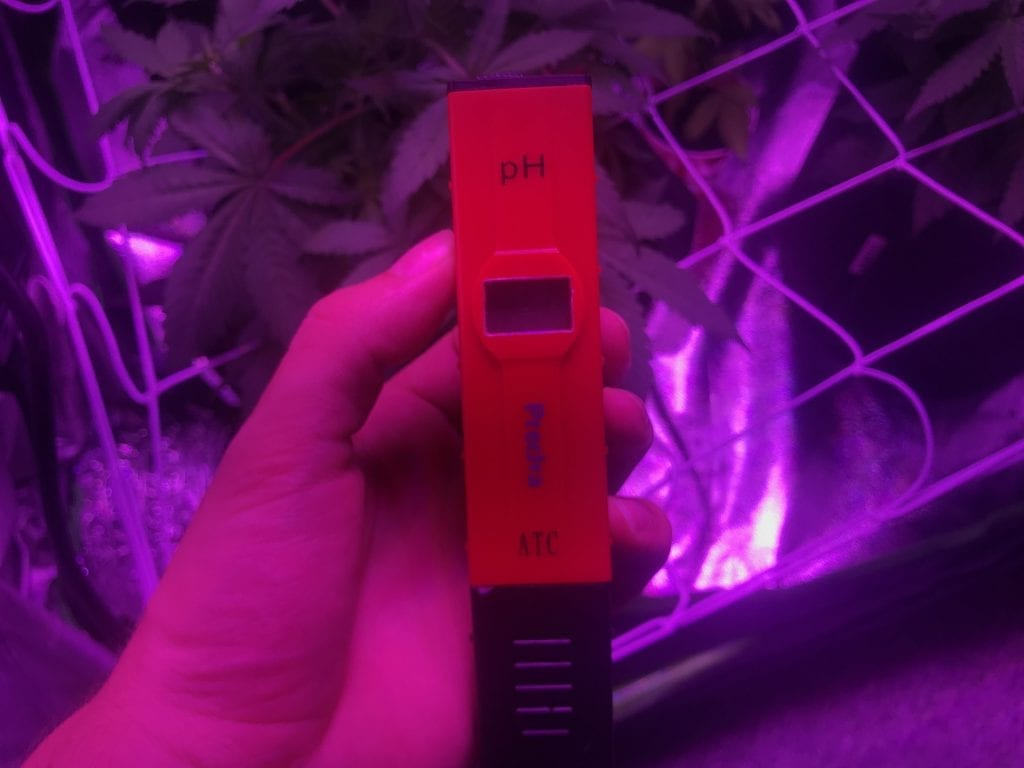 Digital pH tester for your cannabis grow setup. so you can feed your plants the right water. red shell that glows under the LED. For the best indoor cannabis plants.