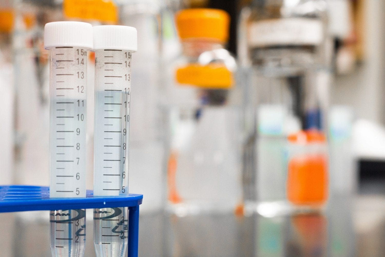 Cannabis drug tests are common for government jobs.