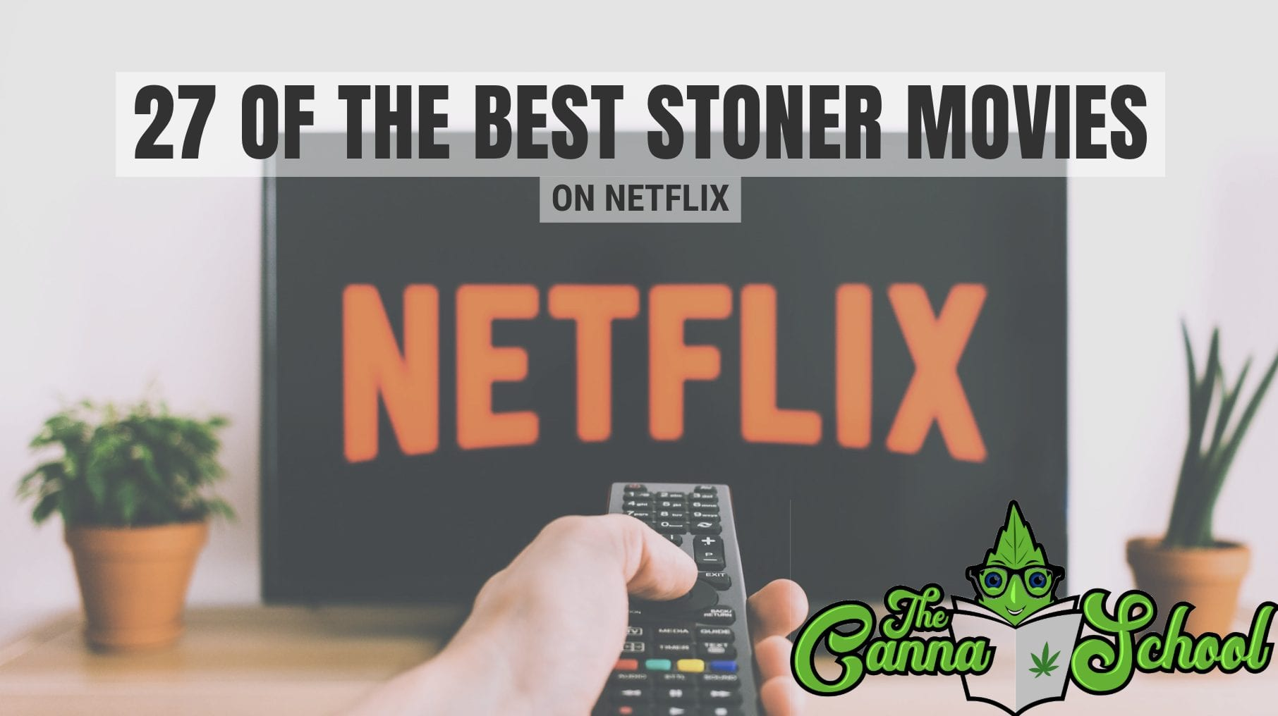 27 of The Best Stoner Movies Blog Graphic