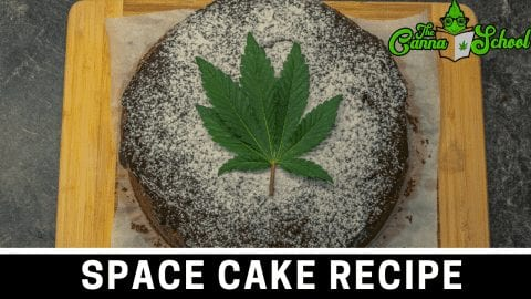 weed space cake with cannabis leave in the middle on a cutting board.