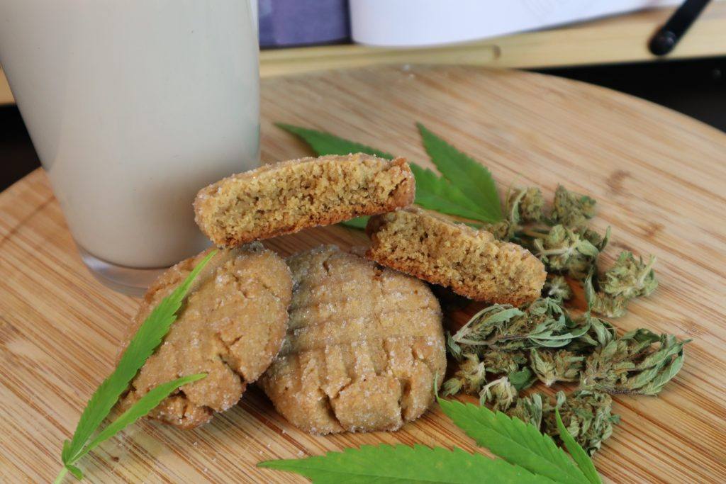 three vegan weed peanut butter cookies on a wooden cutting board with a glass of milk, cannabis nugs, and cannabis leaves beside it.